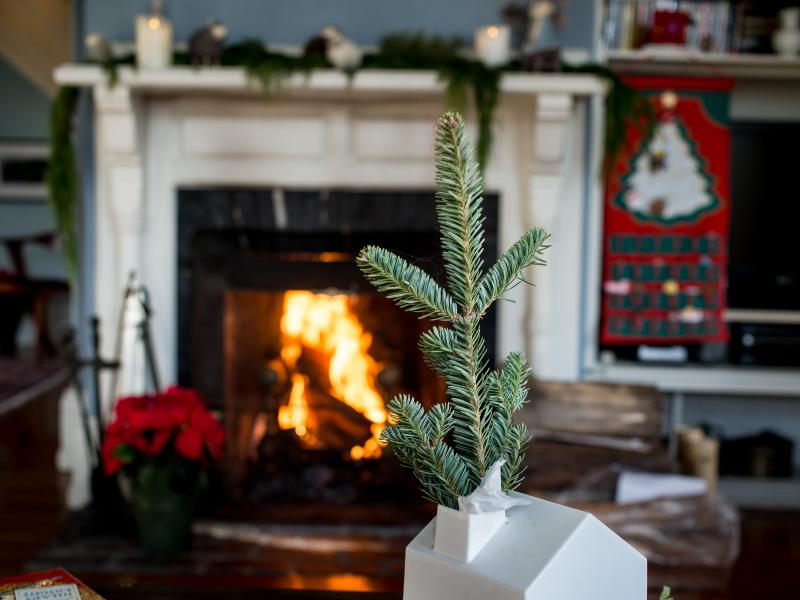 25th Annual Chestnut Hill Christmas Holiday House Tour, Dec.