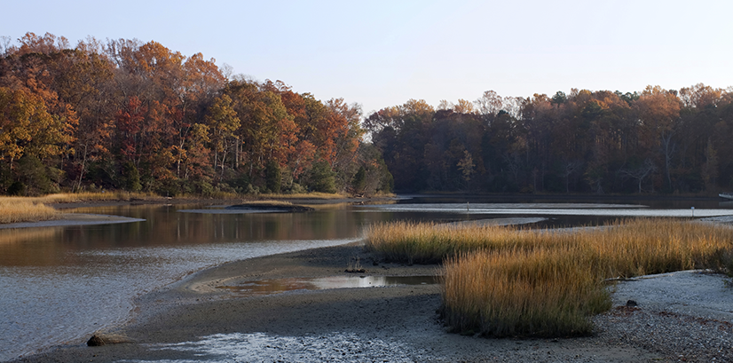 Chesapeake Water Environment Association